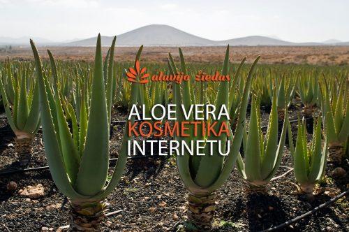 aloe_vera_plantacijos-fb