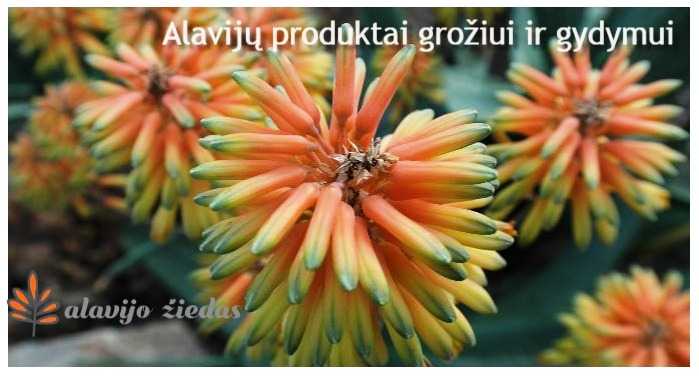 alavijų produktai
